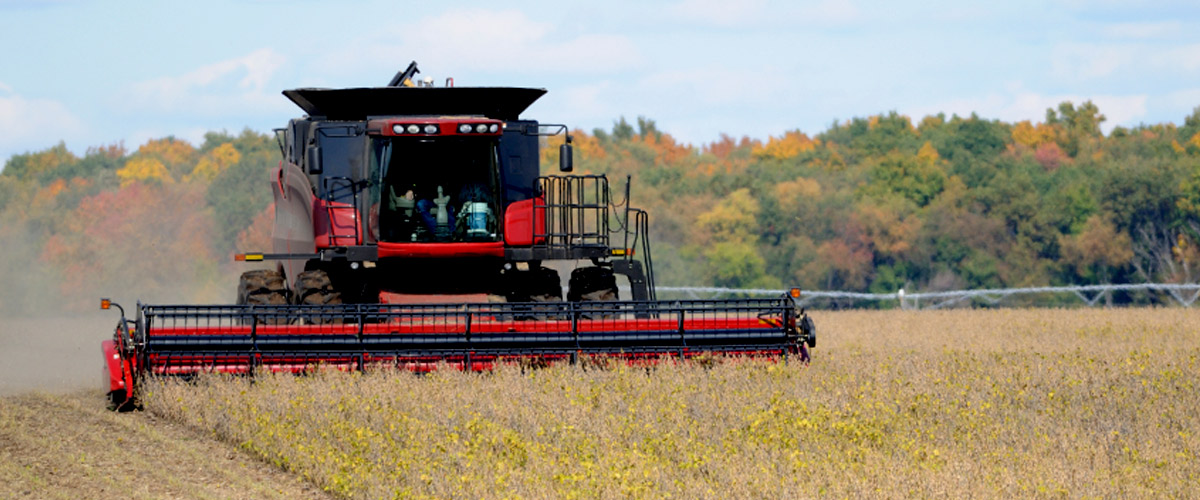 agricoltura_11